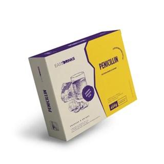 Kit 6 Saches Penicillin Limão, Gengibre E Mel Easy Drinks 450g + Spray Mel 30g